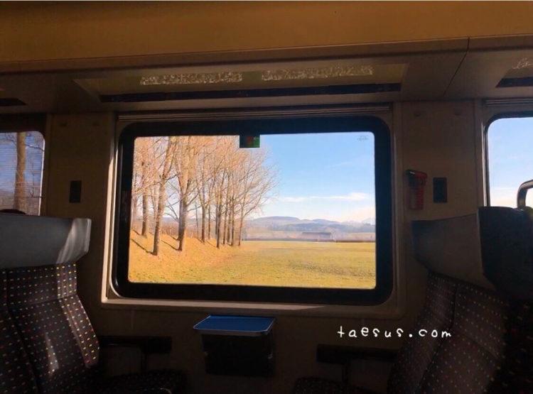 スイス 林 丘の景色